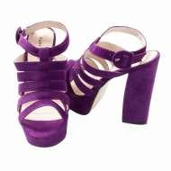 Celeste-2 Purple