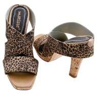 Matisse Roosevelt Leopard