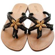 Mystique Gold Starfish Black