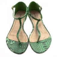 Matisse Fusion Green