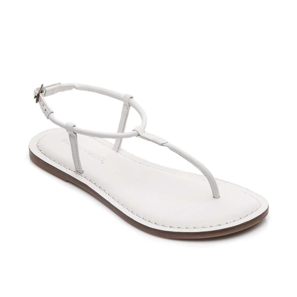 0f303283382 Bernardo Lilly Flat Thong Women s Sandals